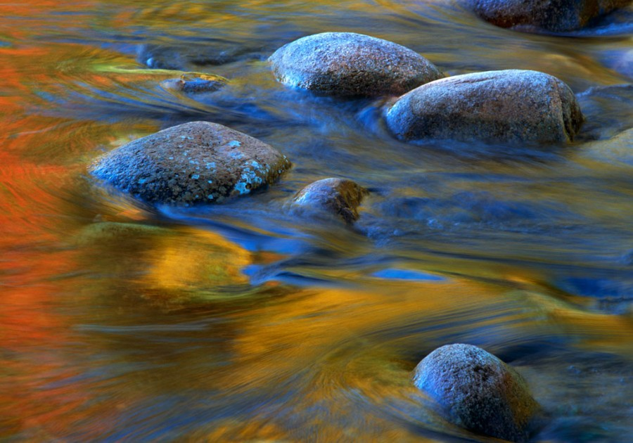 Wild River Reflections