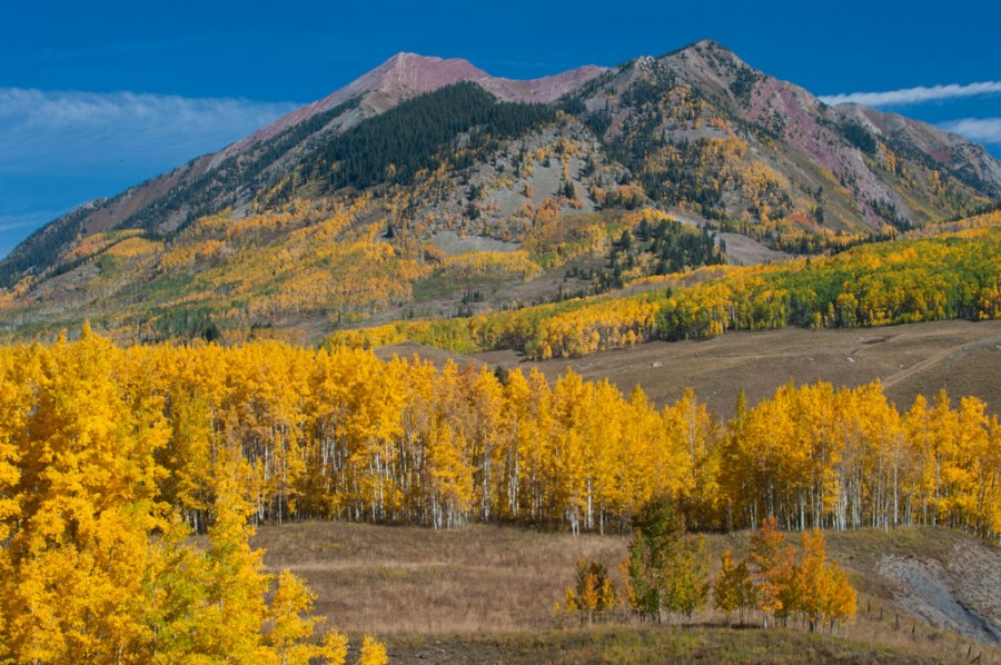Gothic Valley, Crested Butte, Colorado