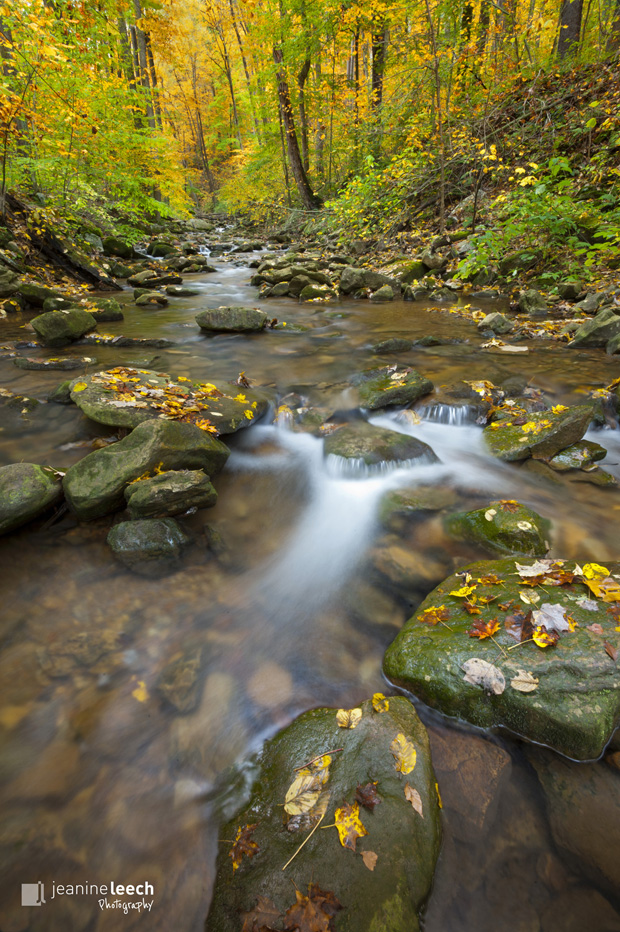 October 8, 2012: Linn Run State Park in Pennsylvania.